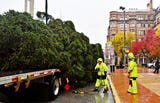The York Community Christmas tree arrives at Continental Square in York City, Tuesday, Nov. 6, 2018.