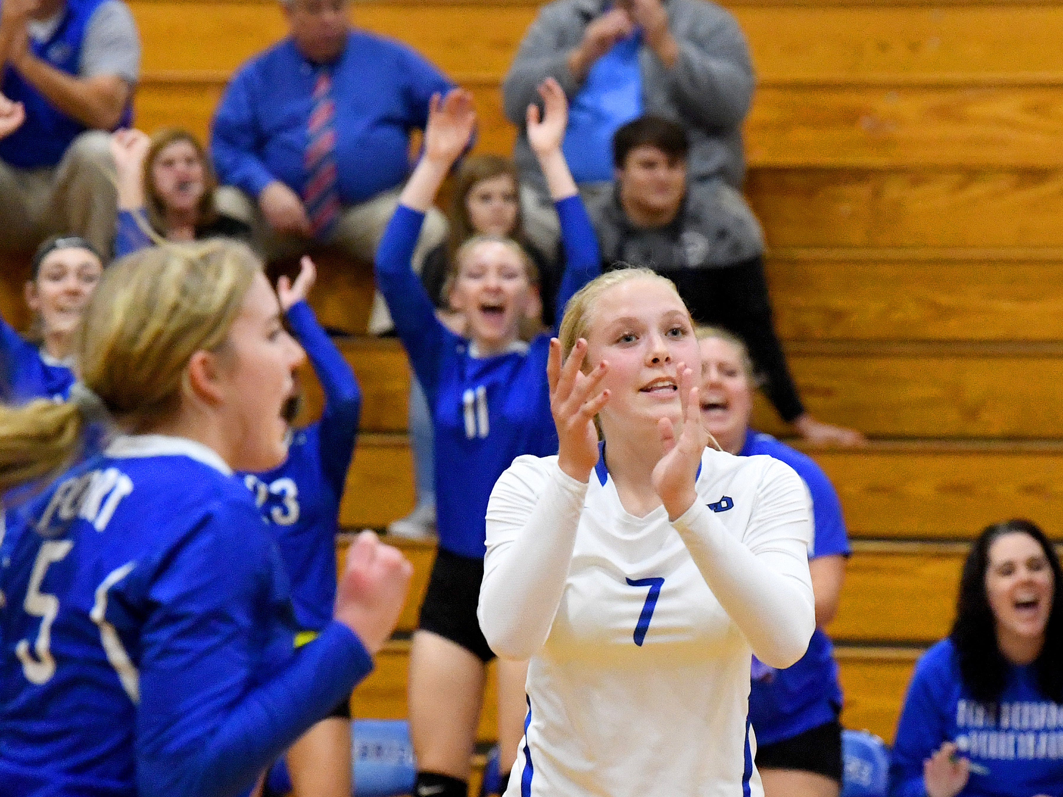 Fort Defiance's Jordan Schulz cheers for a point scored during a Region 3C semifinal match played in Lexington on Monday, Nov. 5, 2018.