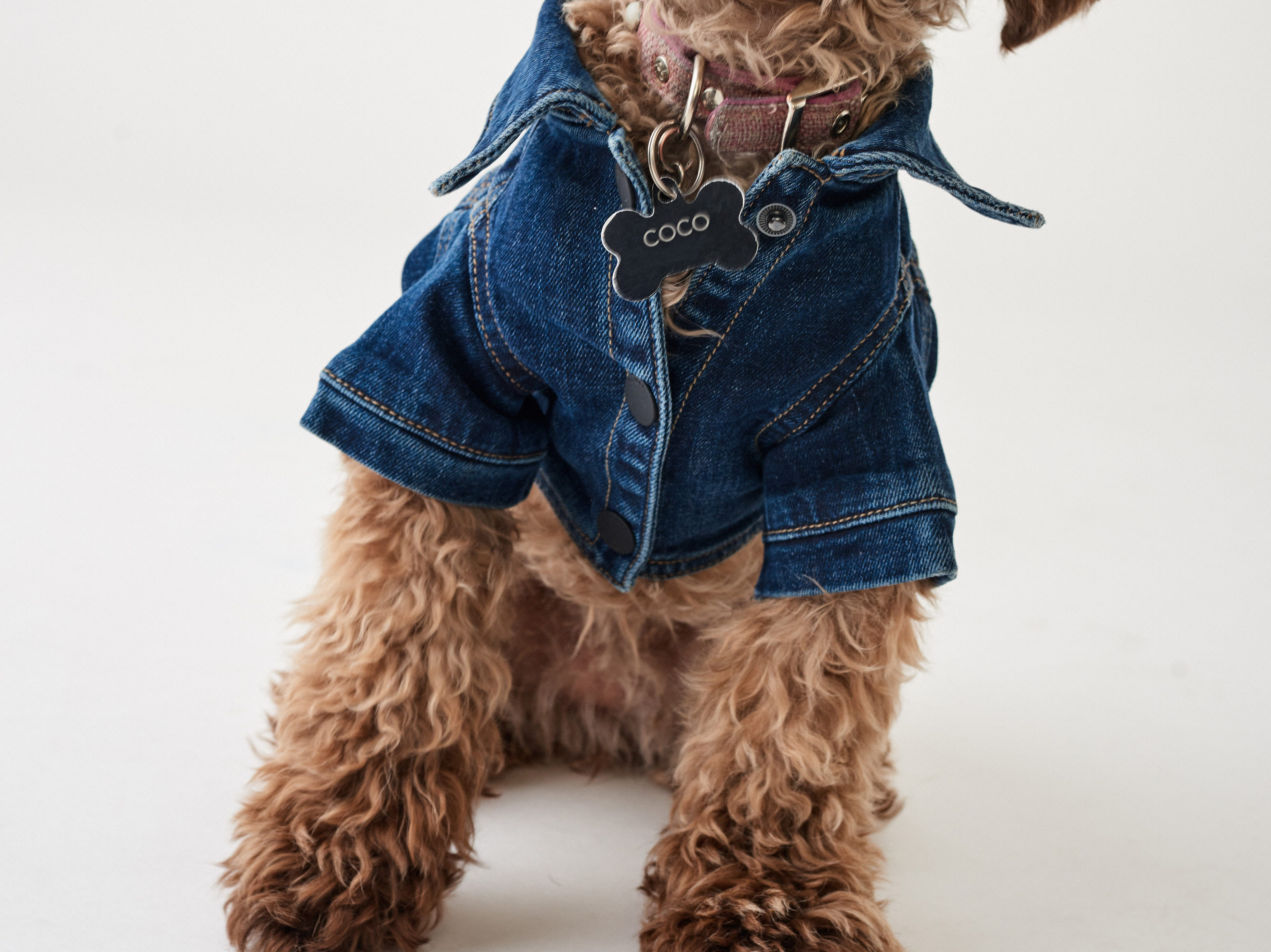 Premium denim brand DL1961 also has designed a sustainably-made denim jacket for dogs.