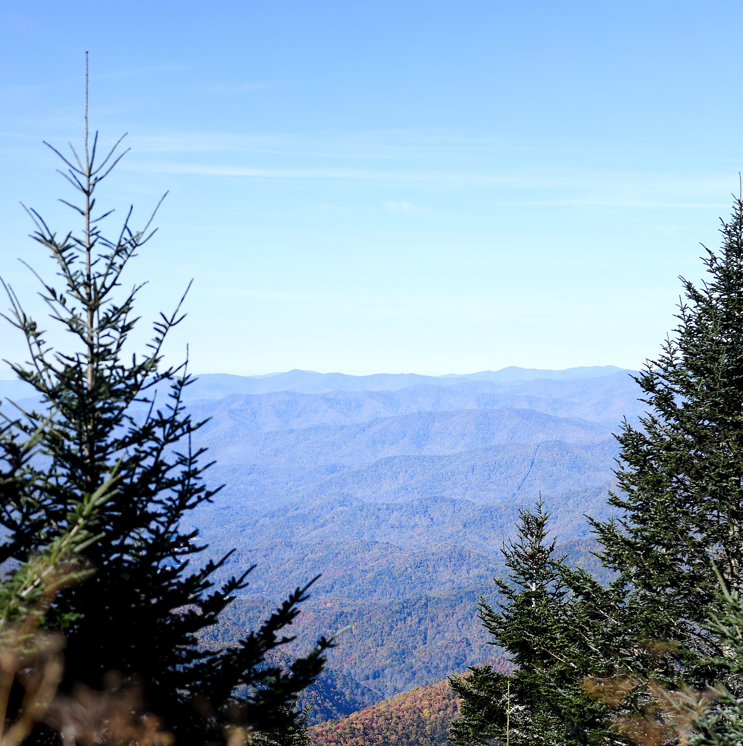 Humans shouldn't hibernate; WNC winter hiking is fun on the right trail, with right gear