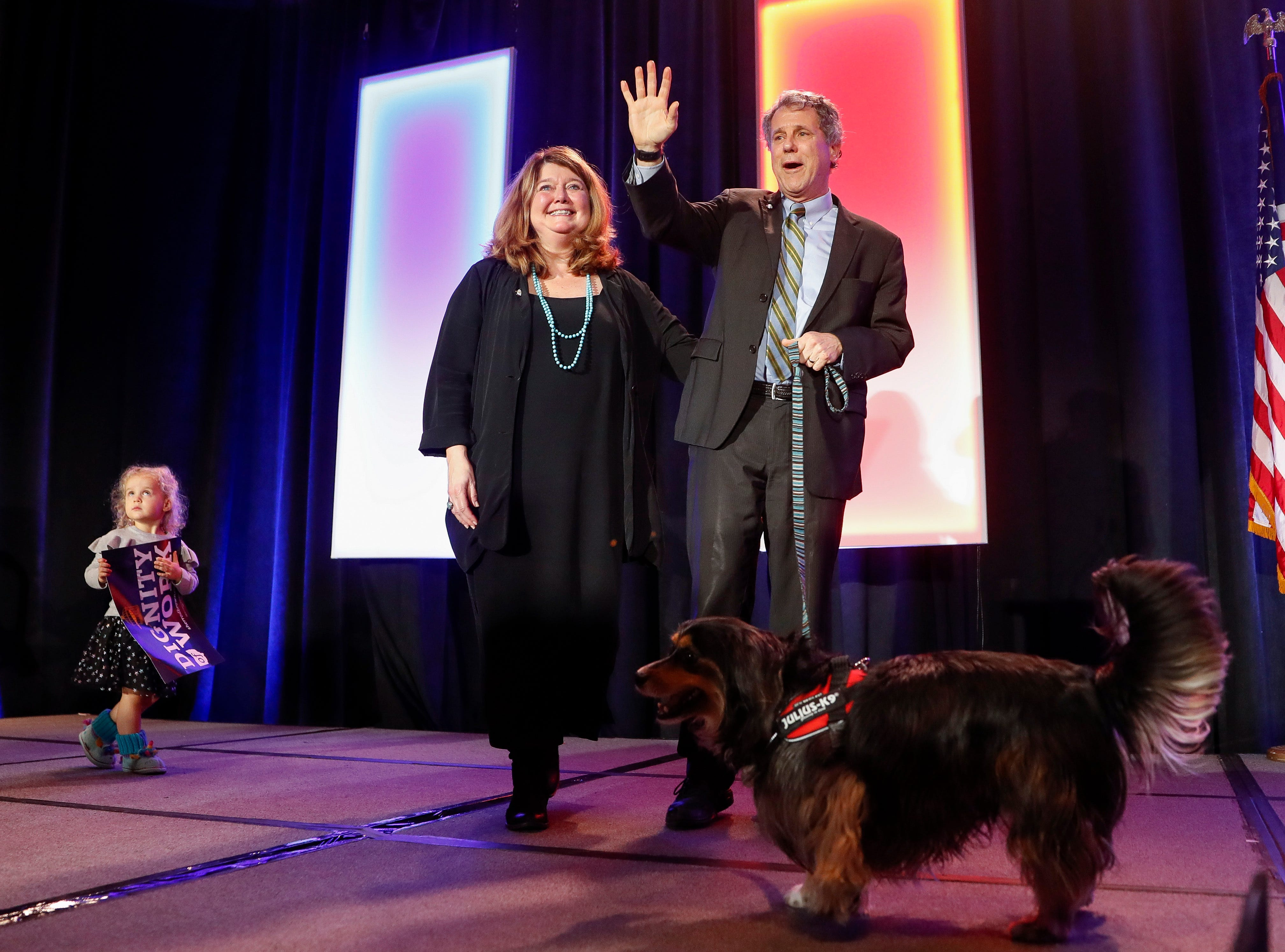 Yup, you just saw a dog on stage with Sen. Sherrod Brown during his victory speech