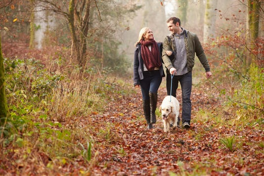 Romance Unleashed Finding Love With A Fellow Dog Owner
