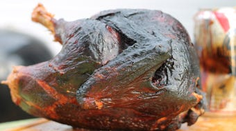 Grilling a turkey is a great way to open up oven space when cooking for Thanksgiving. Using a beer can is a great way to keep the turkey juicy.