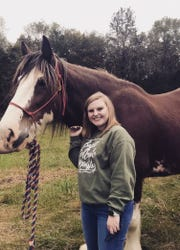 Haley, a volunteer who is a student at the University of Tennessee, gets acquainted with a Clydesdale.