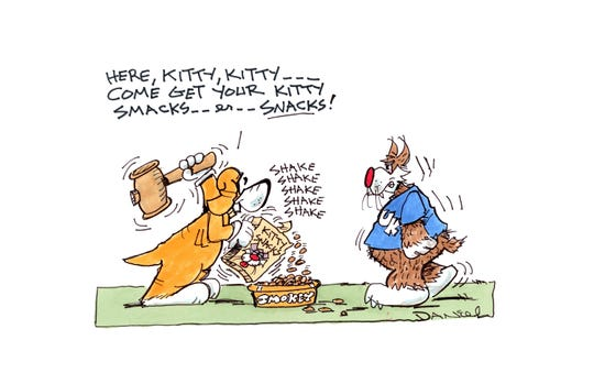 Charlie Daniel Voltoon for the Kentucky-Tennessee game.