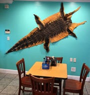 Perhaps gator was on the menu at some point. It remains on the wall.