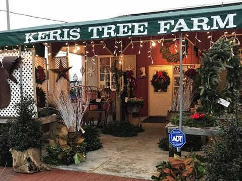 Keris Tree Farm & Christmas Shop, 848 Route 524 (Stone Tavern Road), Allentown. Keris has more than 1,000 trees of Blue Spruce, Norway Spruce, White Pine, Douglas Fir and Concolor Fir. Their renowned Christmas Shop is home to one of the finest vintage Christmas collections anywhere.