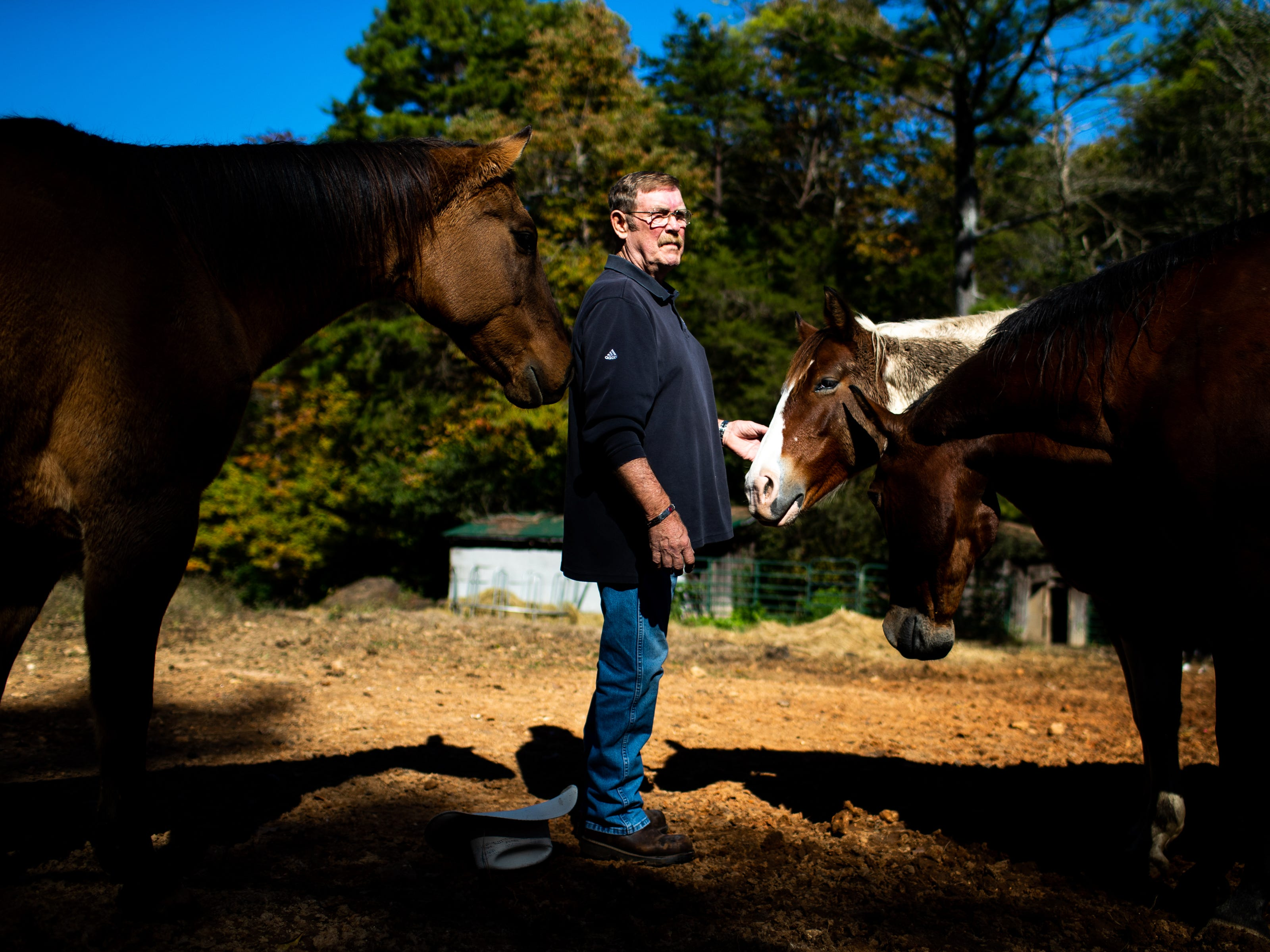 "Vietnam veteran David Ross stands with his horses at his home Monday, Oct. 29, 2018, in Clarksville, Tenn. Ross returned from Vietnam without fanfare and was called a ""baby killer."""