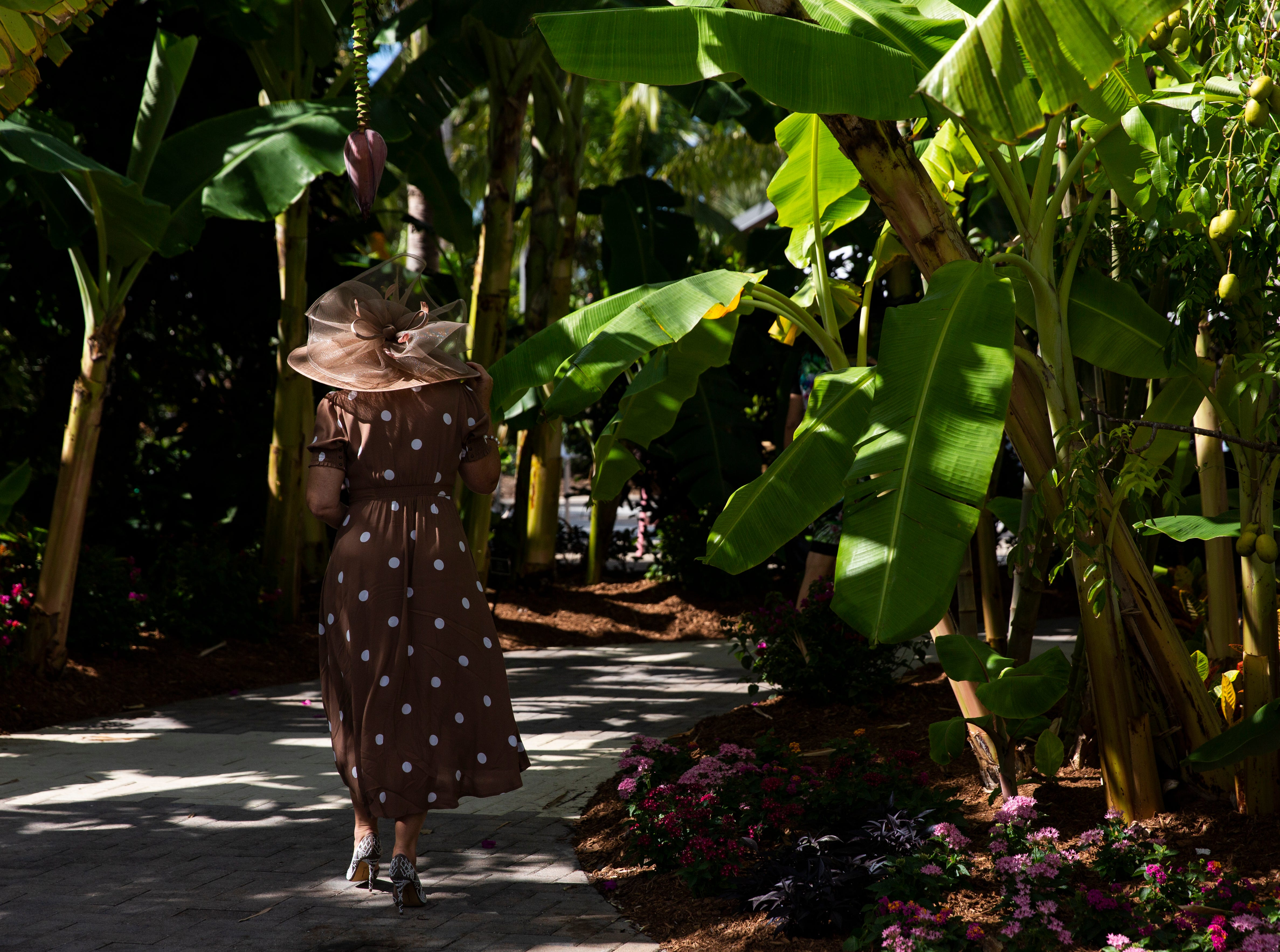 A guest walks through the winding pavement of the Naples Botanical Garden while attending the 15th annual Hats in the Garden fundraiser, which marks the beginning of the year's social season.