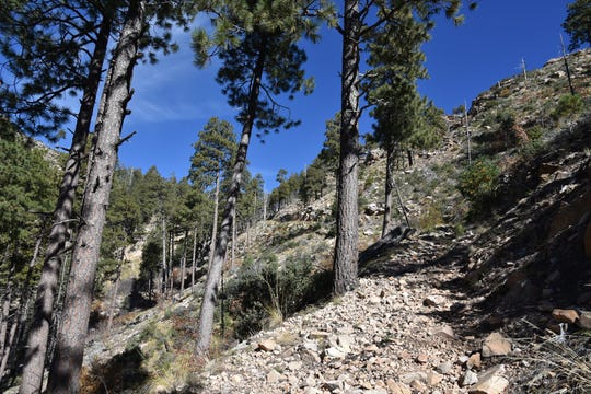 The upper part of the Col. Devin Trail is steep and rocky.