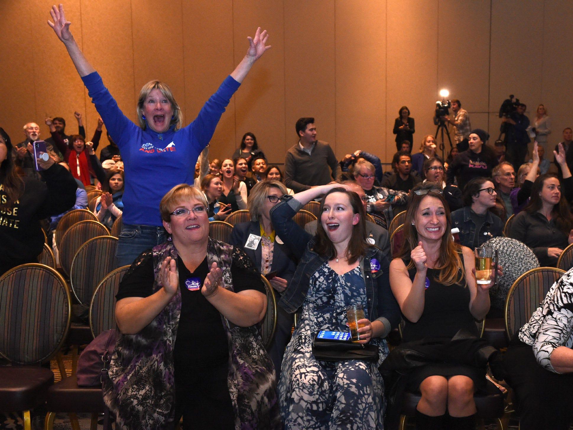 Nevada Election Blog: Rosen defeats Heller. Sisolak defeats Laxalt. Schieve wins