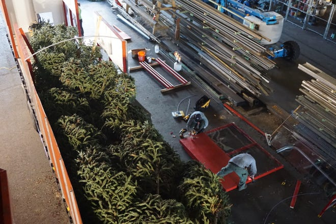 A view from above of the U.S. Capitol Christmas Tree being prepared for its 3,000-mile journey on Sunday, Nov. 4, 2018, at the Murphy Veneer Plant in Sweet Home.