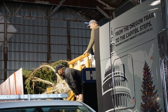 Rob Malyevac from the Kootenai National Forest in Montana lends a hand on Sunday, Nov. 4, 2018, at a mill in Sweet Home as preparations are made for transporting the U.S. Capitol Christmas Tree from Oregon to Washington, D.C.
