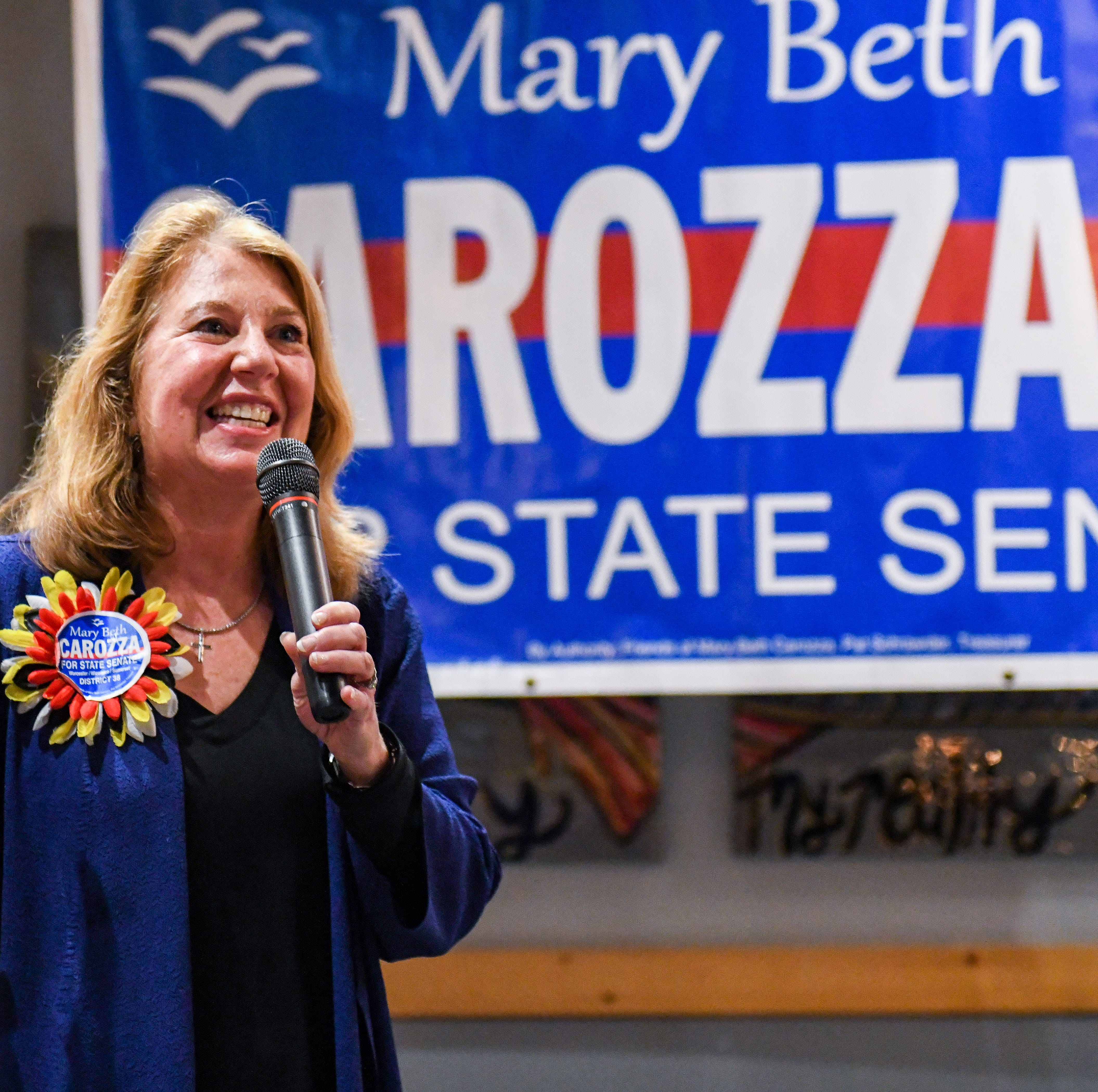 Here are the issues Mary Beth Carozza will tackle during 1st State Senate term