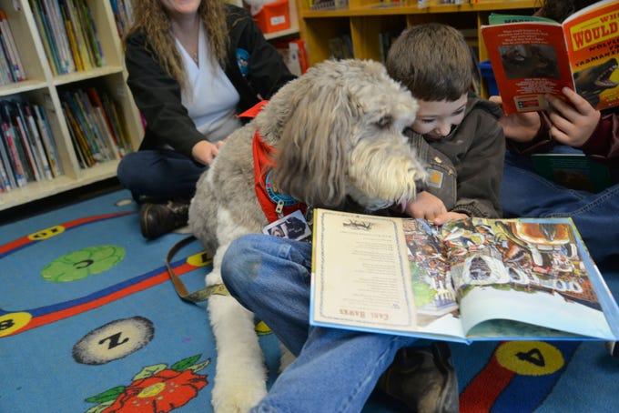 Kathleen Wilson and her labradoodle, Rory, visit Churchville Elementary once a week so students can read to the dog. Rory is a certified therapy dog and is allowed in any Augusta County School or school function. Here Rory is pictured with Luke Ritchie, 8 years old.