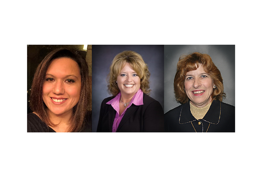 Lisa Loidolt, Robyn Holthaus and Lisa Braun were elected to Sauk Rapids-Rice school board.