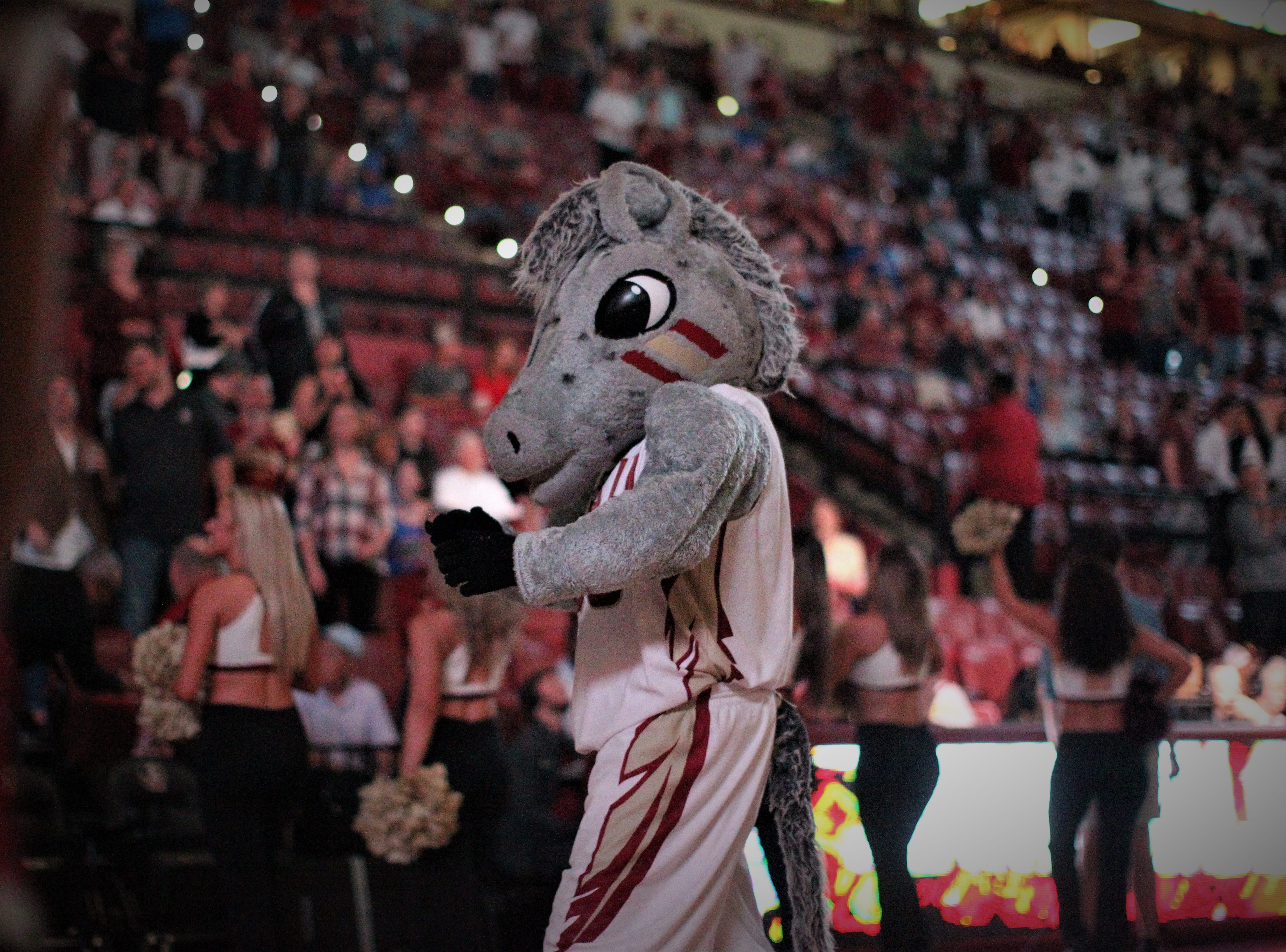 FSU mascot Cimeron during the Sunshine Showdown game against Florida on Tuesday at the Tucker Civic Center.
