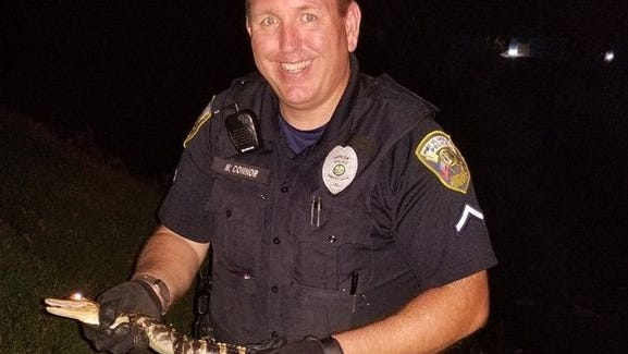 Officer Michael Connor with Walmart alligator.