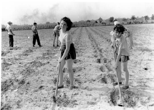 City school children helped with agricultural efforts during World War II.