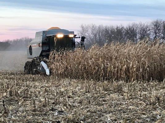 Corn Harvest Fall 2018 Kottke