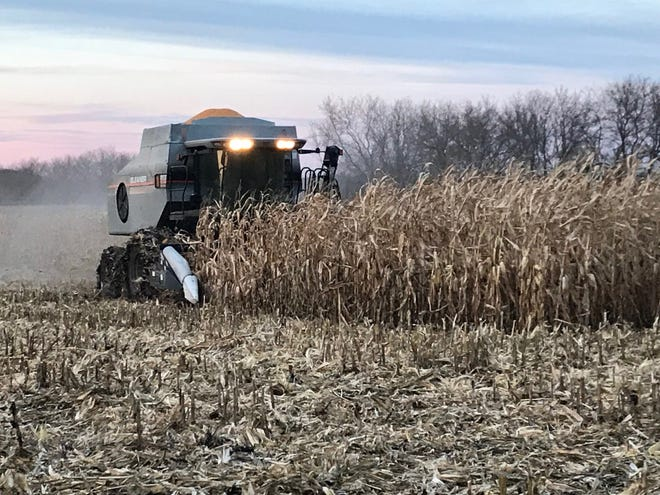 Last fall, wet conditions slowed farm machinery down in the fields. Unfortunately Mother Nature picked up where she left off, preventing farmers from making much planting progress - adding to their already long list of woes for 2019.