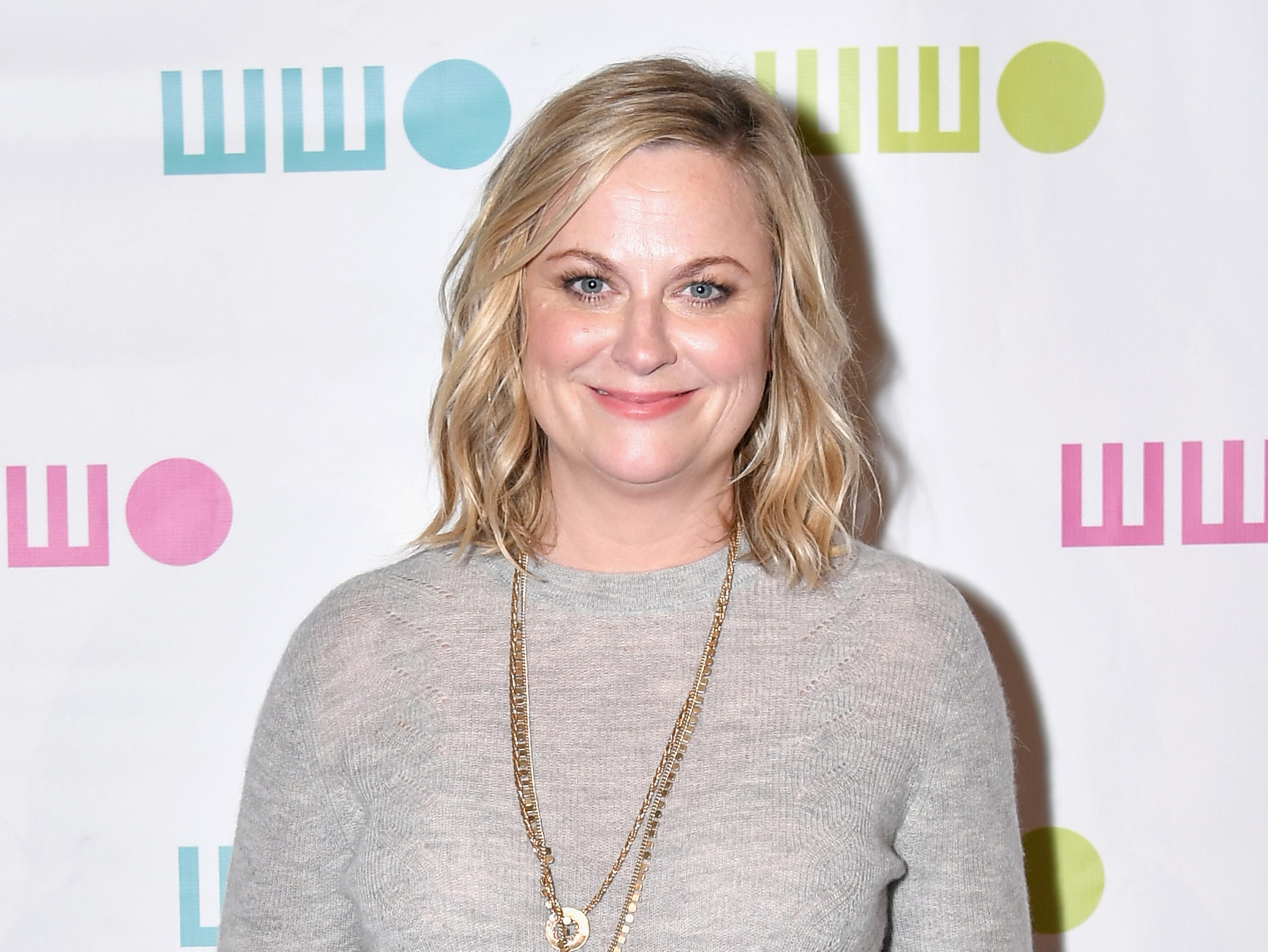 NEW YORK, NY - NOVEMBER 05:  Amy Poehler attends the Worldwide Orphans 14th Annual Gala at Cipriani Wall Street on November 5, 2018 in New York City.  (Photo by Michael Loccisano/Getty Images for WWO) ORG XMIT: 775237864 ORIG FILE ID: 1057816254