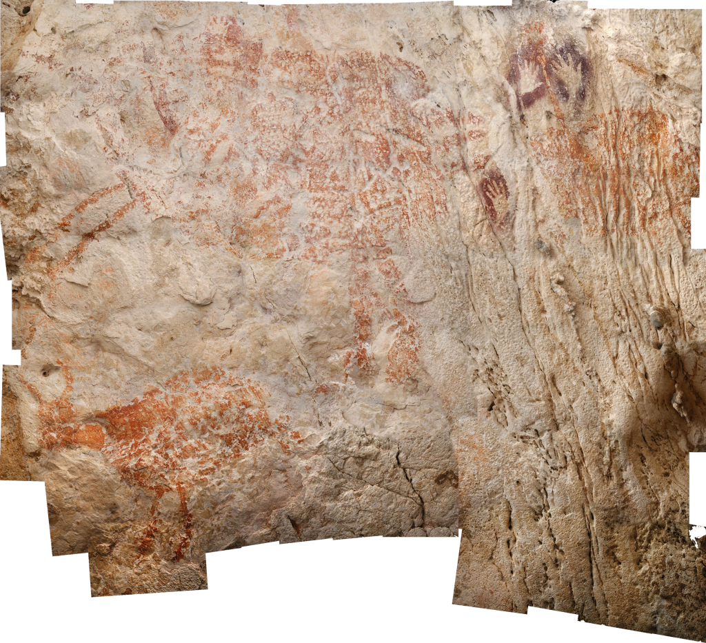 Earliest cave paintings of animal discovered in Indonesia