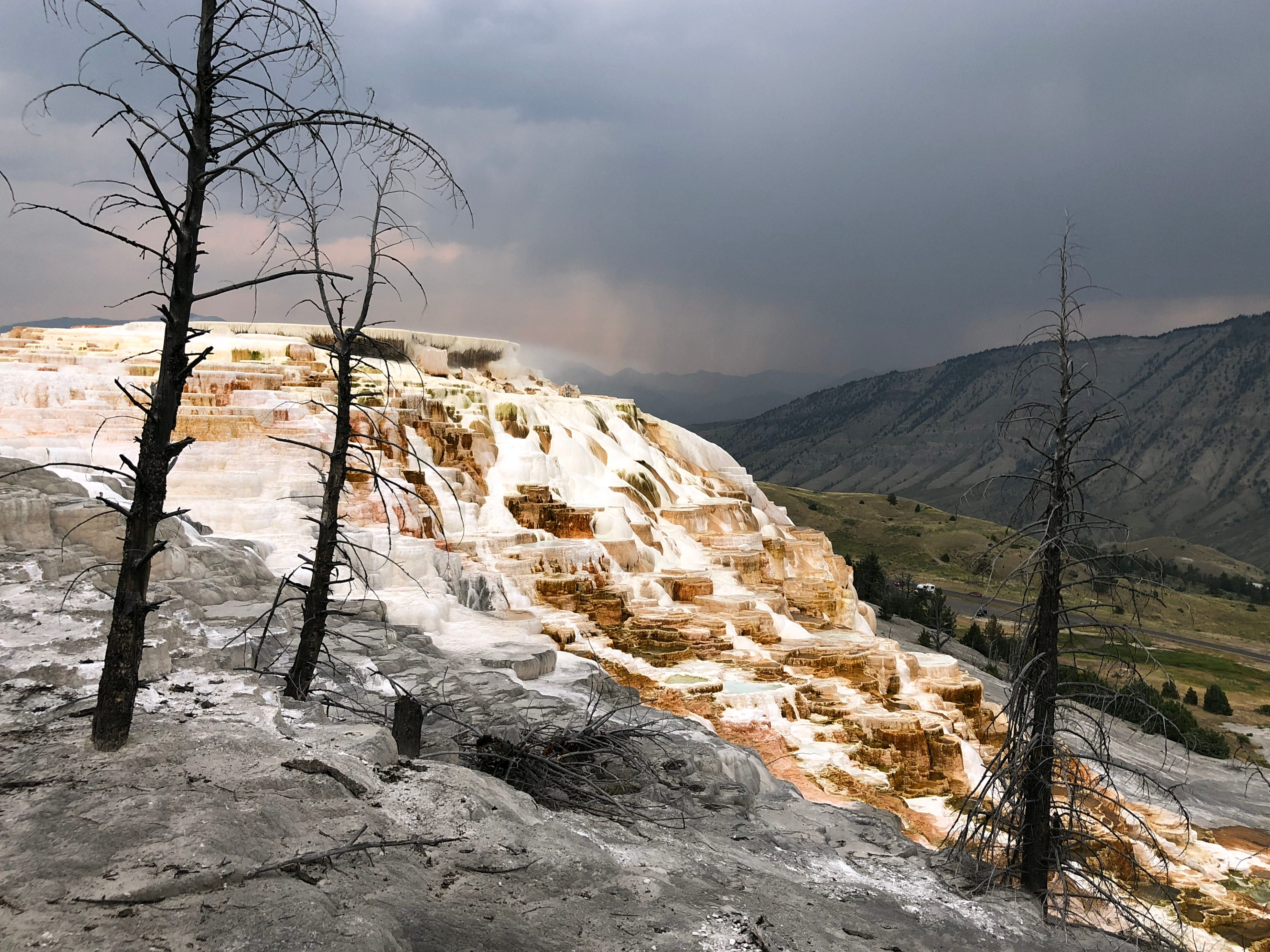 The terraces at Mammoth Hot Springs.