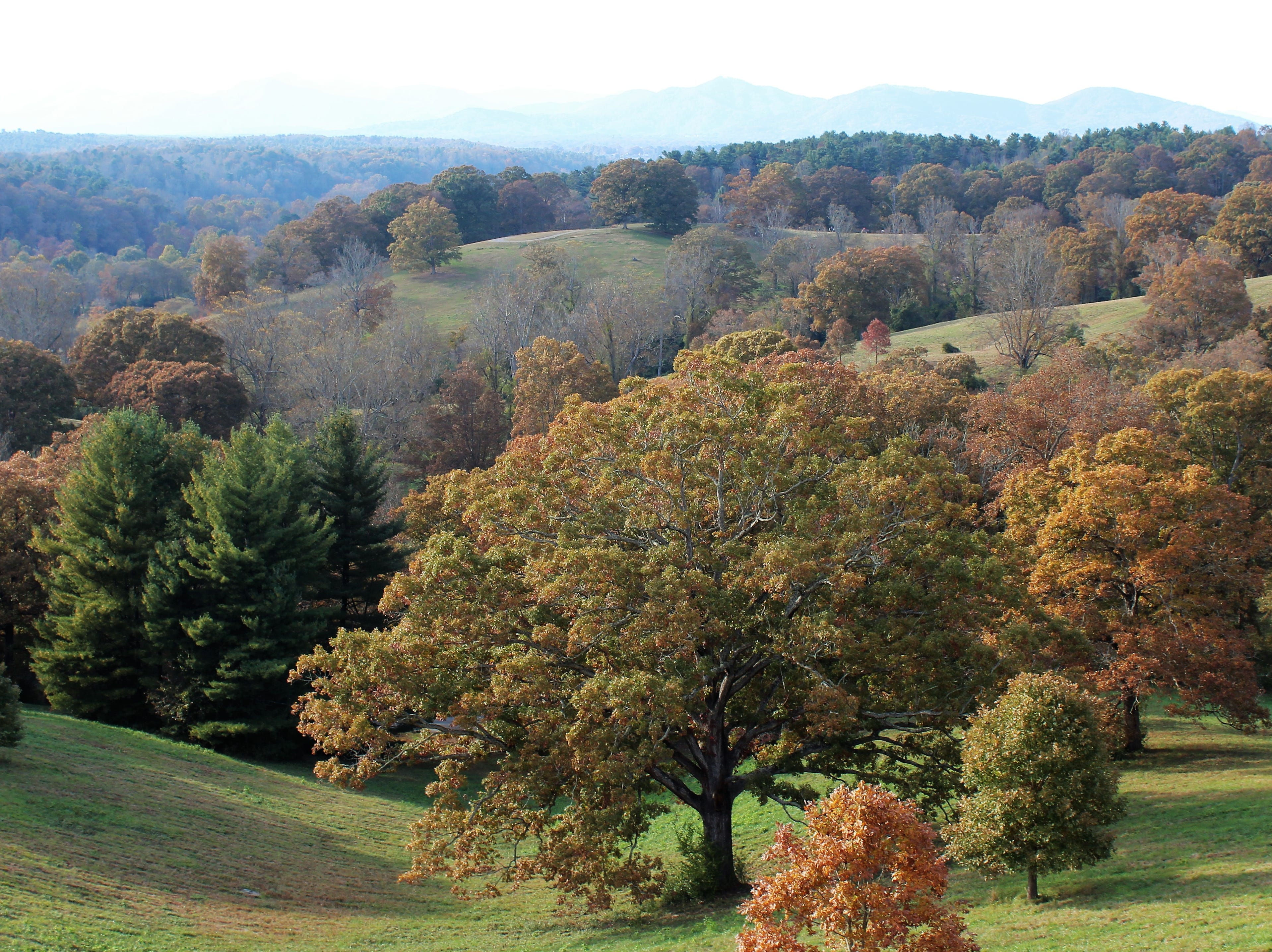 Sure, the view out from your back porch looks just like this. This fall setting looks west toward the Smoky Mountains of Tennessee from Biltmore House in western North Carolina. Great care was made to preserve the rural setting.