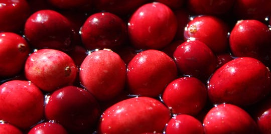 A close up of cranberries ready to be made into cranberry sauce.