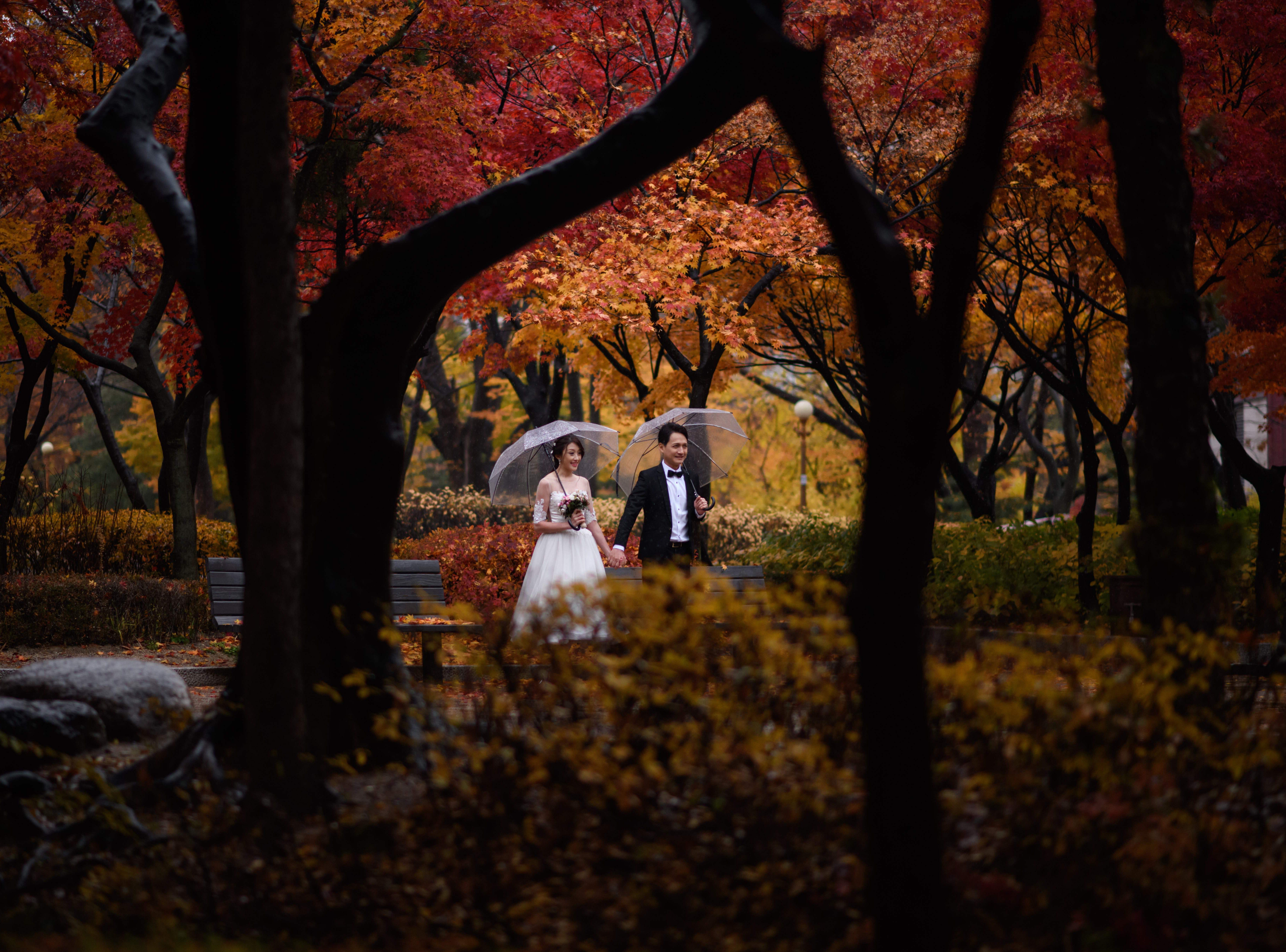 A couple poses for wedding photos in a park in South Korea, on Nov. 8, 2018.