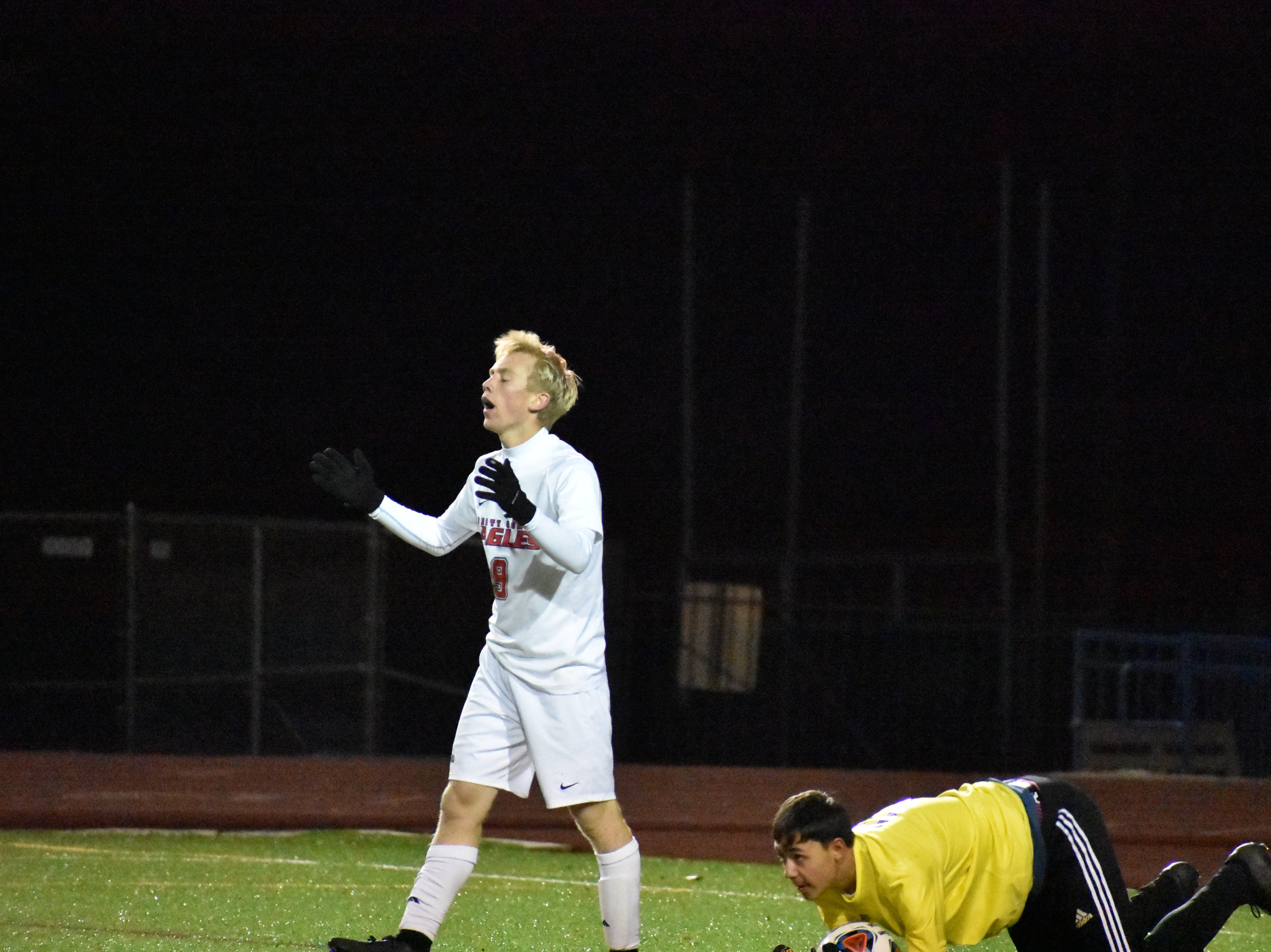 Liberty Common's Evan Walter reacts to a  save during the Eagles' state semifinal win over Roaring Fork.