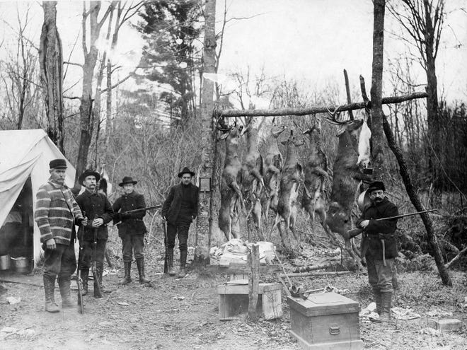 Many hunters in the late 1800s and early 1900s died of gunshots in accidental shootings during deer season. In 1914 alone, 24 deer hunters died in shootings.