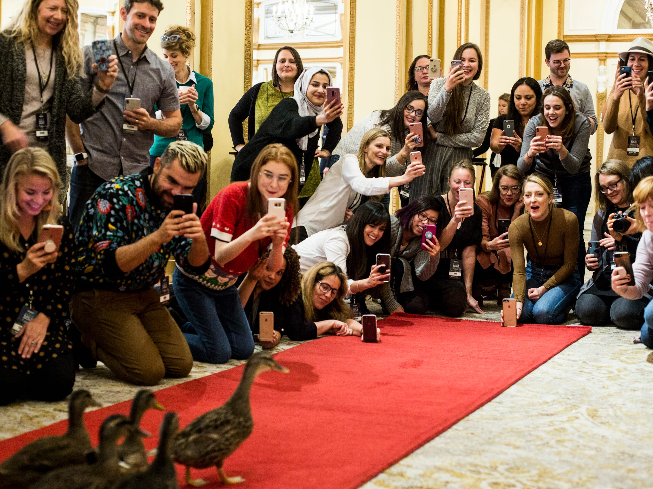 Saveur Blog Award finalists and guests gather around the red carpet during a private Peabody duck march Nov. 8, 2018, at the Peabody Hotel.