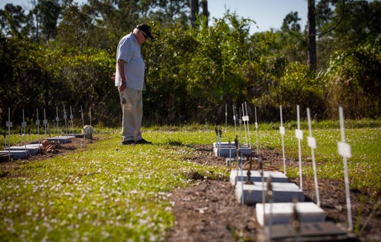 Korean War veteran Sam Heath takes time to look over each of the restored veteran graves at Lake Trafford Memorial Gardens in Immokalee on Thursday, Nov. 8, 2018.