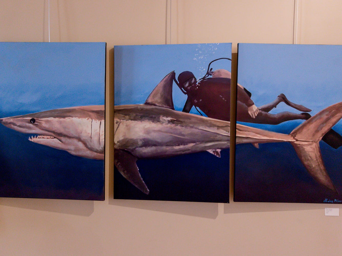"""Diver & Shark,"" a three panel acrylic painting by Lukas Mikurda, is one of over 100 pieces on display as part of the ""Cinco Banderas Collection"" at the Artel Gallery on Tuesday, October 30, 2018. The exhibit, which runs through November 30, is celebrating its 30th anniversary this year."