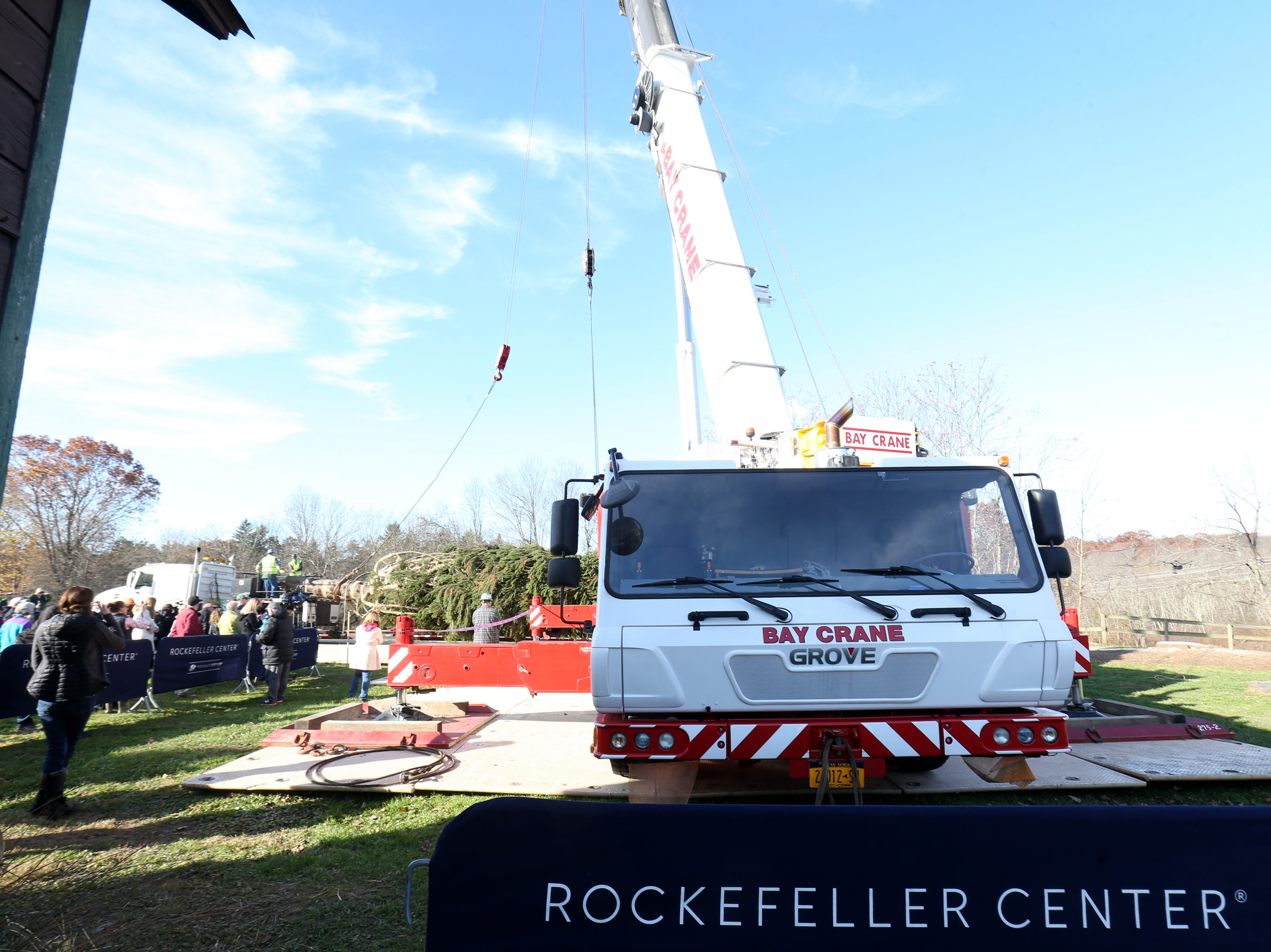 A crew from Rockefeller Center harvest a Norway Spruce tree in Wallkill for the 2018 Rockefeller Center Christmas Tree on November 8, 2018.
