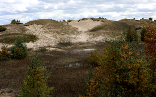 Sand dunes are seen at Kohler-Andrae State Park near Sheboygan, Wis. According to retired state Department of Natural Resources wetland ecologist Pat Trochlell, this sandy spot on the lakeshore is a globally rare and fragile dune system. The habitat was created over thousands of years, continually shifting with the wind. The dunes are held together without soil by roots, supporting several threatened species of plants and insects. Photo taken Oct. 11, 2018.