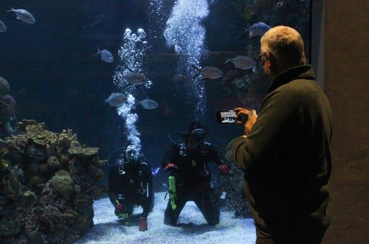Springfield aquarium diving veterans