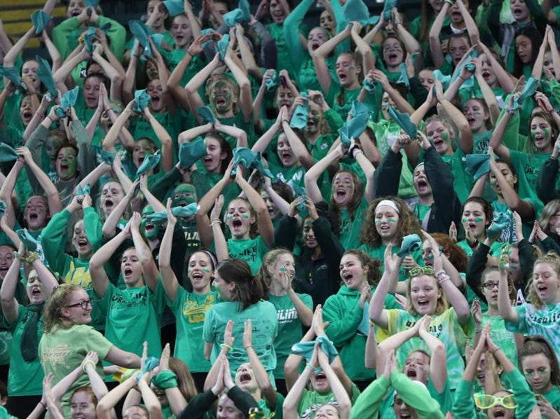 Ursuline fans cheer on the Lions  during their State semi-final volleyball game against Olentangy Libery, Friday, Nov.9, 2018.