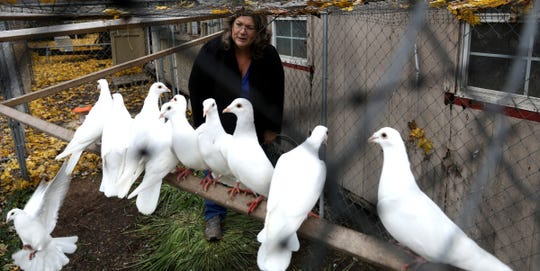 Phyllis Stevens enters a fenced coop to retrieve a few of the 100 whites doves she and her husband own.  They operate Dreamers White Dove Release a family business in Carrollton, Michigan.