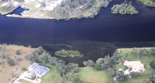 Algae streaks the shoreline and an upriver oxbow in the Caloosahatchee in this photo taken Friday by Calusa Waterkeeper John Cassani.
