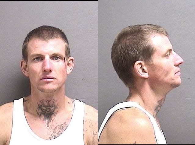 "Dolan, Chase Christopher:  37 yoa, white male, 6'1"", 175 pounds, brown hair, blue eyes, wanted on:  Theft (possession of stolen property),1st offense, felony, Resisting Arrest, misdemeanor, Obstructing a Peace Officer, misdemeanor, total bond $7,500"