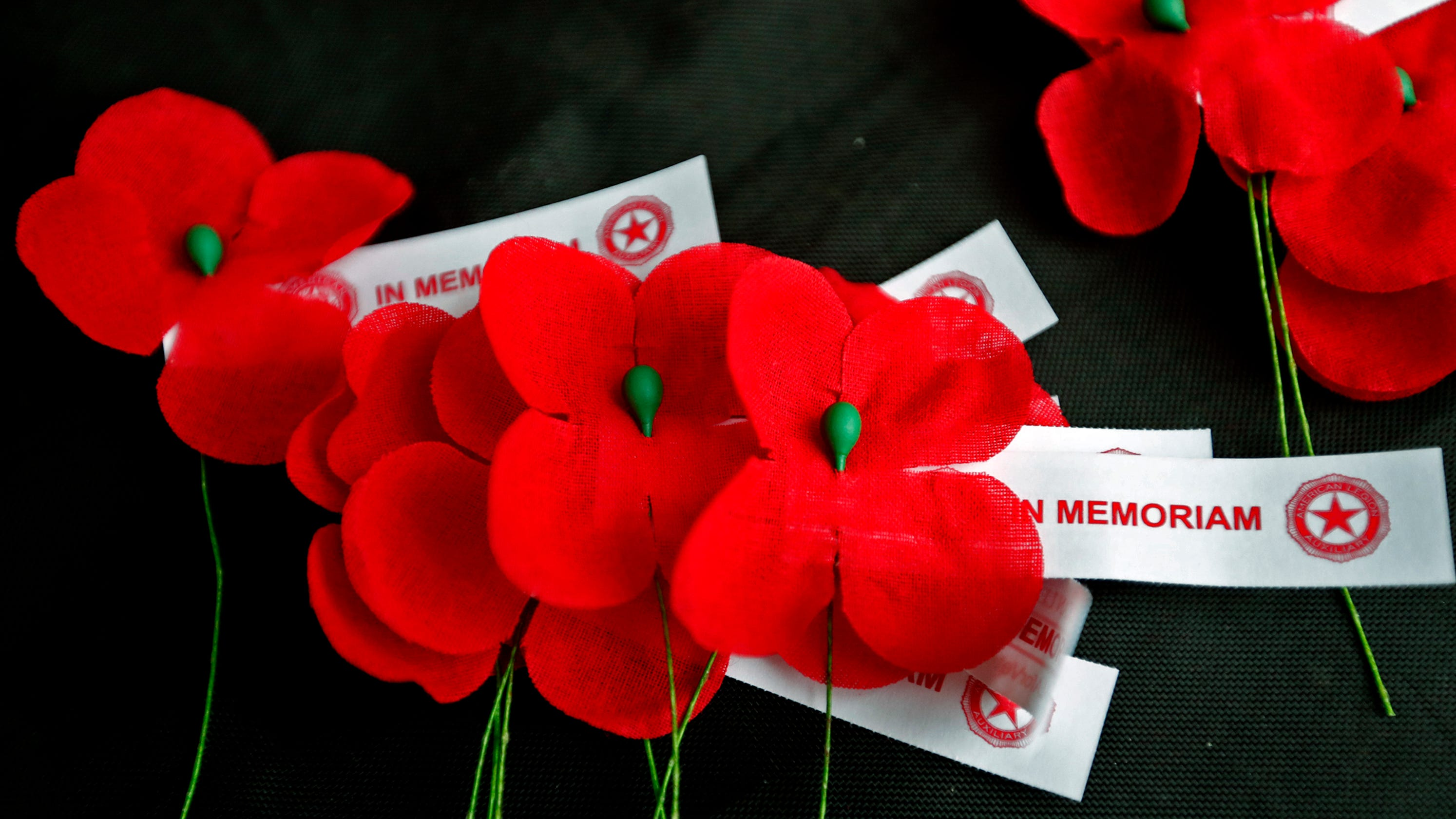 Remembering Veterans With Red Poppies