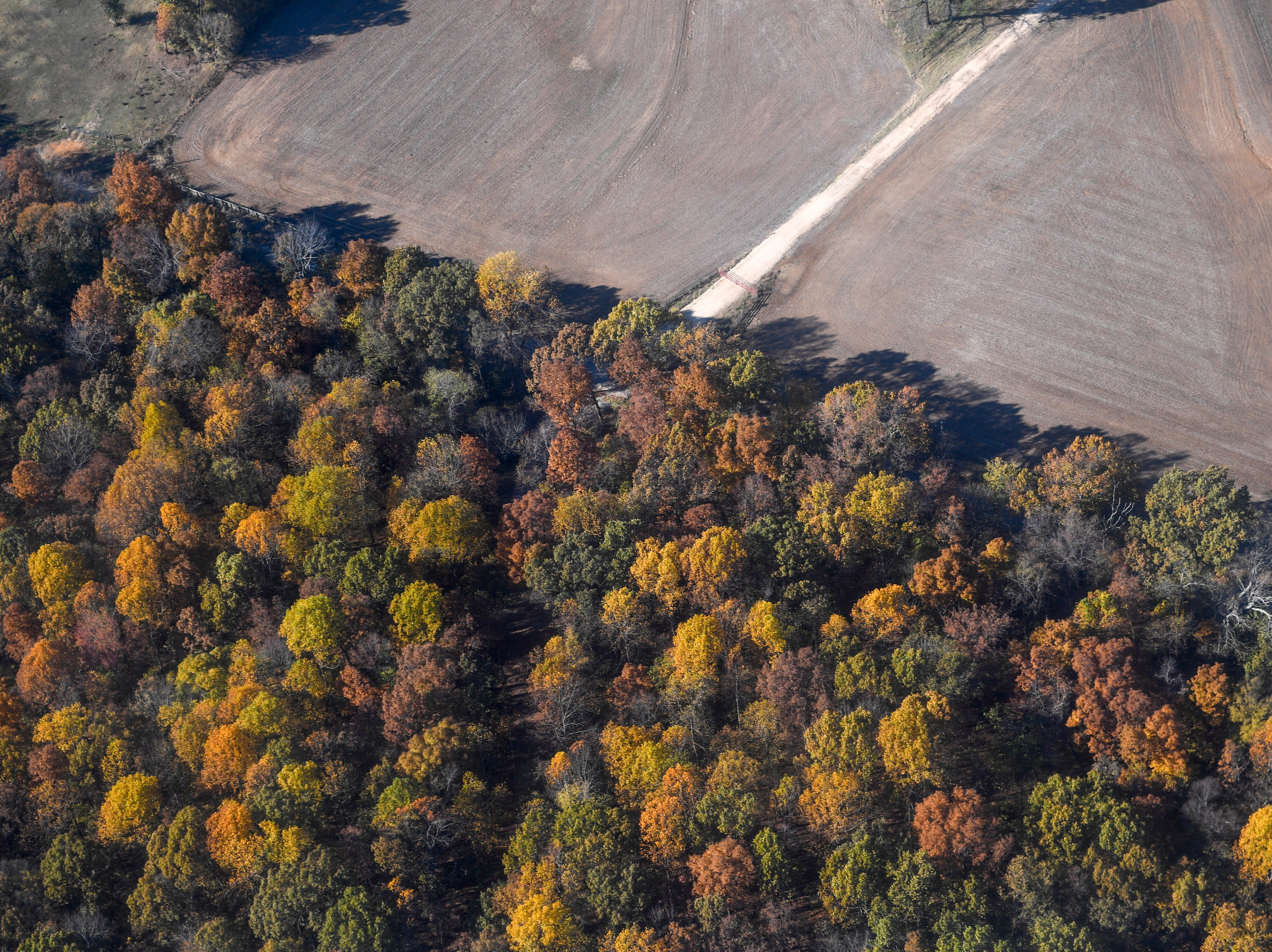 The changing of colors on trees can be seen in this photo from a Black Hawk helicopter during the annual Bosslift event put on by Employer Support of the Guard and Reserve (ESGR) and the Tennessee National Guard at 164th Airlift Wing in Memphis, Tenn., on Thursday, Nov. 8, 2018.