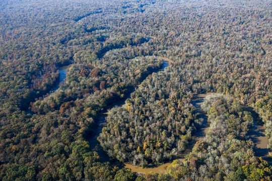 The Hatchie River can be seen winding through forest during the annual Bosslift event put on by Employer Support of the Guard and Reserve (ESGR) and the Tennessee National Guard at 164th Airlift Wing in Memphis, Tenn., on Thursday, Nov. 8, 2018.