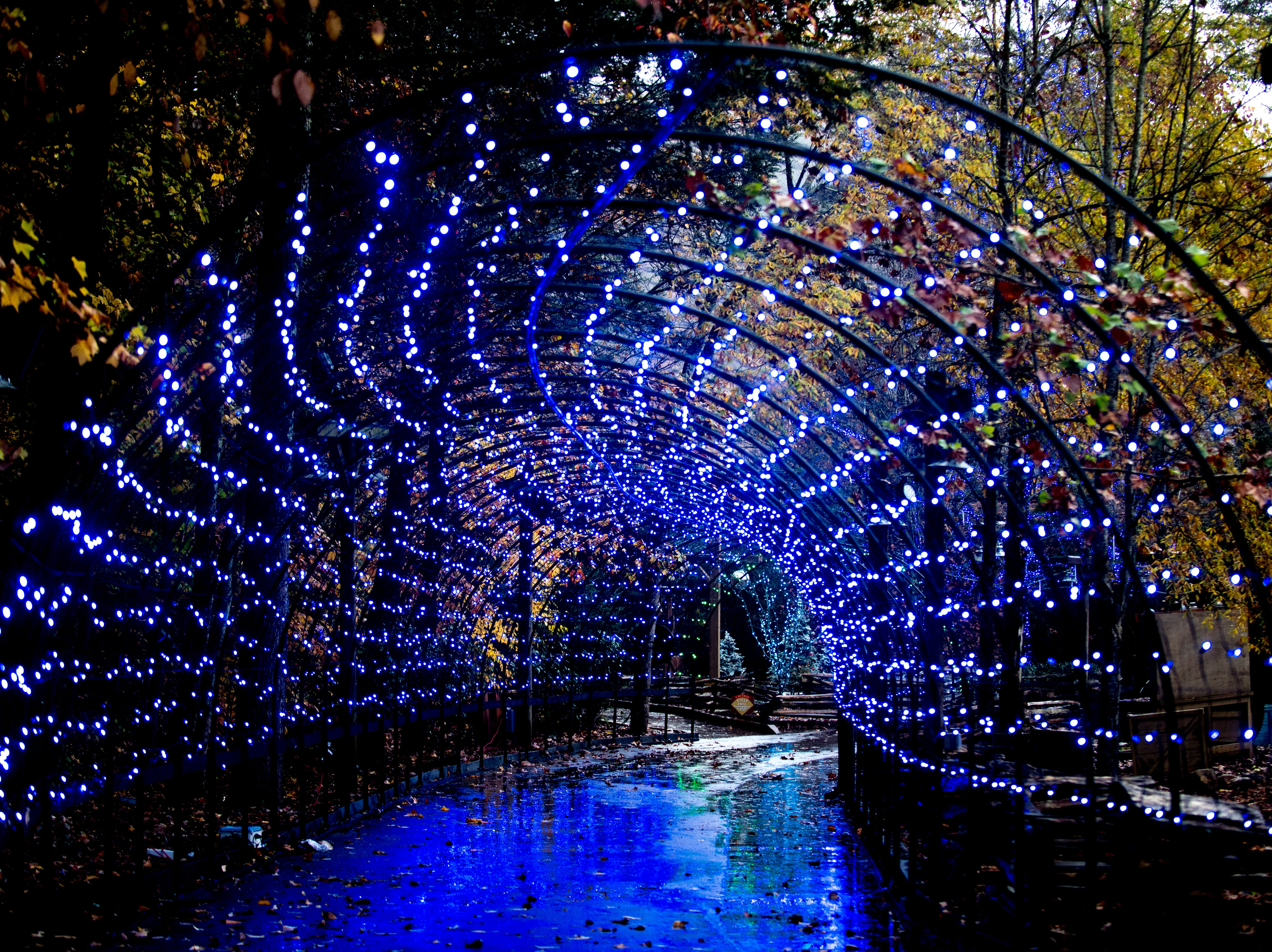 The Arctic Passage light tunnel during media day for a behind-the-scenes look of the Glacier Ridge light display at Dollywood in Pigeon Forge, Tennessee on Friday, November 9, 2018. Glacier Ridge features several new lighting displays, including a 50-ft. tall animated tree, the all new Arctic Passage and the Northern Lights.