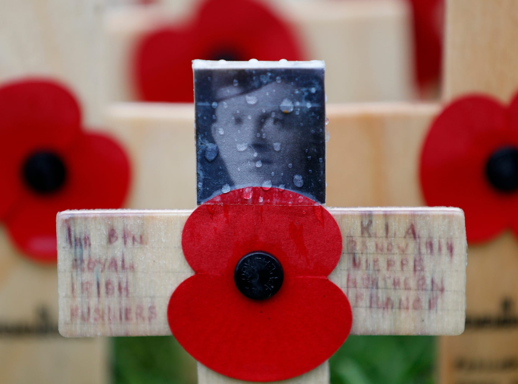 A rain drop covers a photograph of Gerald Briedell of the Royal Irish Regiment who was killed in action on Nov. 23, 1914, adorns a cross placed in the Field of Remembrance at Westminster Abbey in preparation for the annual Armistice Day commemoration for the dead and injured military and civilian in conflicts around the world on Nov. 11, in London, Wednesday, Nov. 7, 2018. (AP Photo/Alastair Grant)