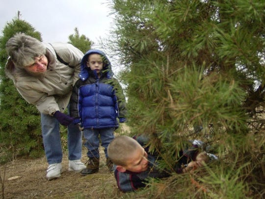 Jim Jens cuts down a Christmas tree for his neighbor Patricia Hartz while she and her grandson, Michael Saurer,  watch in 2002 at Noffke Tree Farms in Mequon.