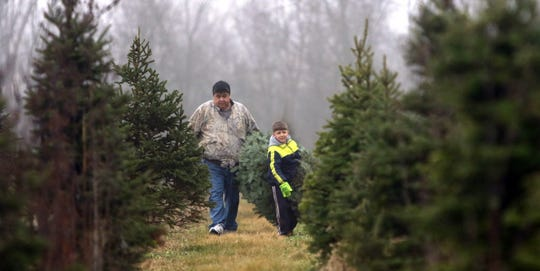 Austin Martin, 8, of Greenfield hauls the Christmas tree he cut with his Grandfather Mike Chingway of Greenfield from the Choose and Cut Christmas Tree lot in Muskego.